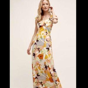 Anthropologie Floral Sheer Ruffled Yoke Dress M
